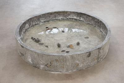 Cecilie Skov, Tub, Meduse, 2018. Concrete, salt water, oak leaves. Ø: 160cm, h: 26cm. Photo: Per Andersen.
